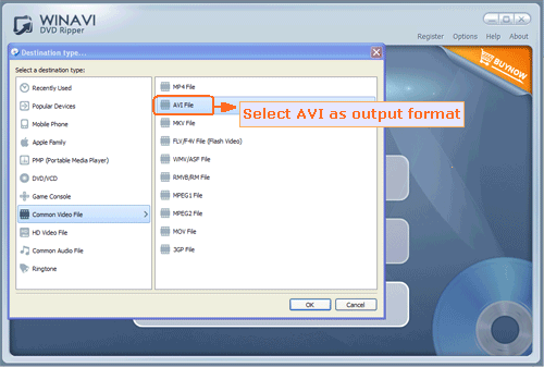input DVD file to rip and convert to avi - screenshot