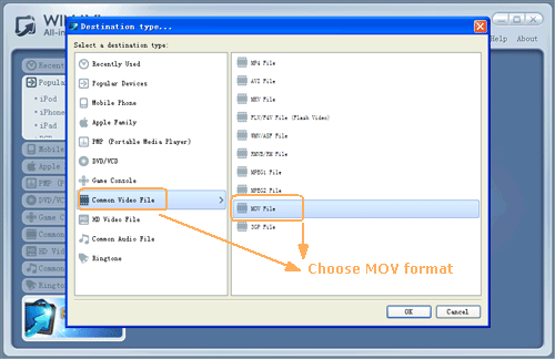 input DVD files for dvd to mov conversion - screenshot