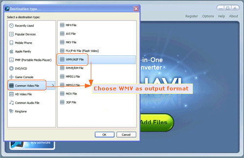 Input Flash FLV file and convert FLV to WMV format -screenshot