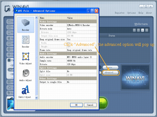 wmv to avi conversion advanced settings - screenshot